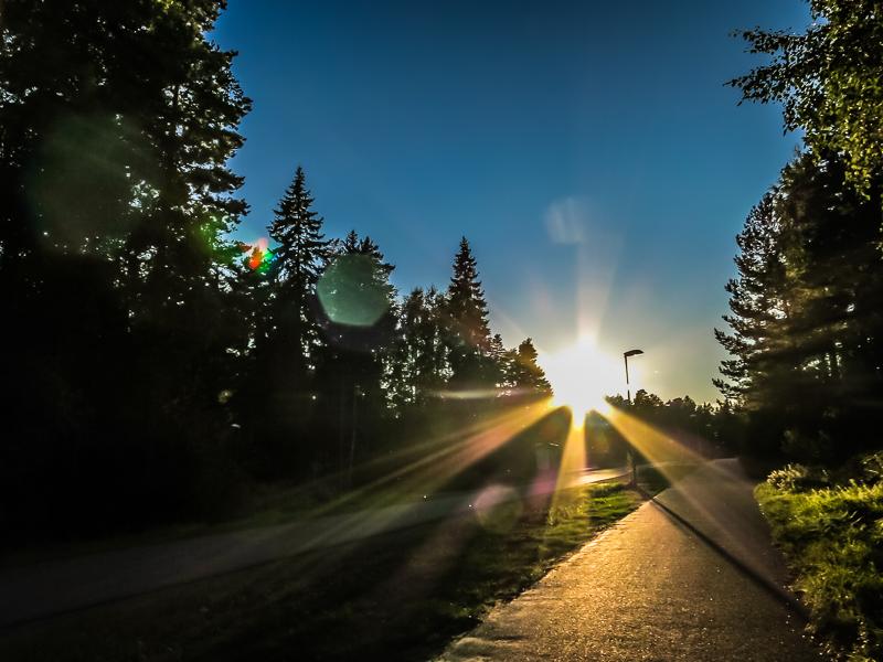 A walk in the evening sun